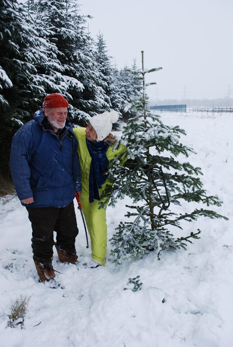 Tadaa. Ein Weihnachtsbaum.